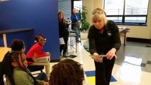 The kids are excited, and terrified, of the baby American Alligator